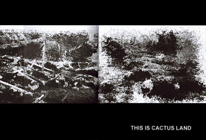 Cactus Land - Chris Marker Owls at Noon: The Hollow Men