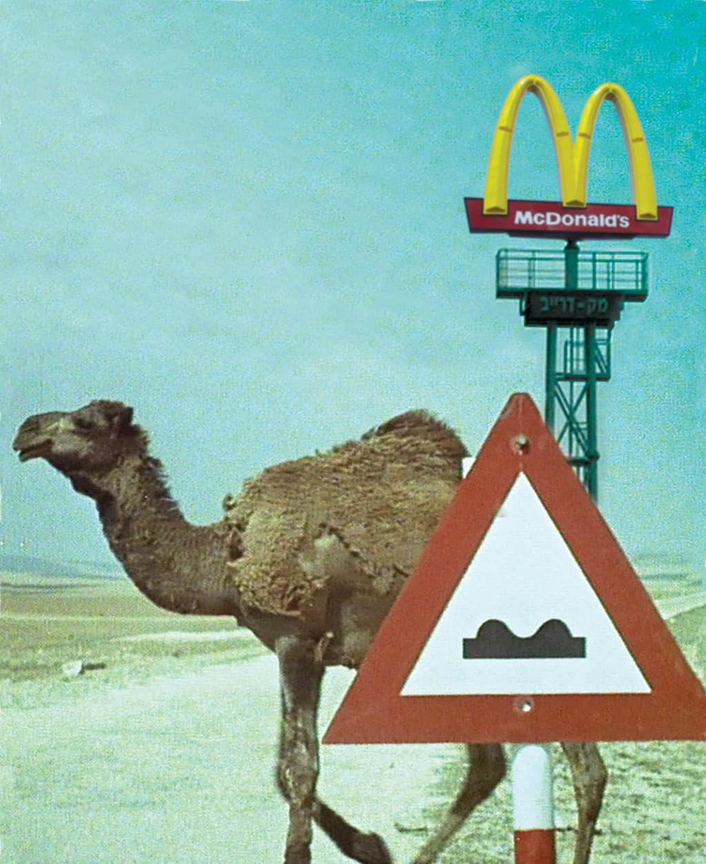 Description of a Struggle - camel crossing sign, camel and McDonald's tower in background